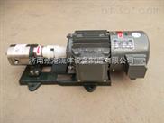 齿轮计量泵,小流量计量泵,化工溶剂泵