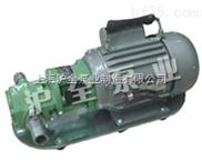 微型齿轮油泵,微型不锈钢齿轮油泵