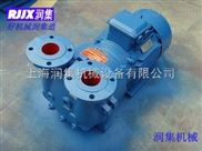 SKA系列水環式真空泵