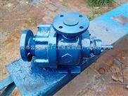 高真空齿轮泵,HVP8/0.6真空齿轮泵,分子蒸馏真空出料泵