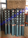 天津解州潛水泵分公司