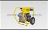4寸离心式污水泵威克诺森耐阴排污泵PTS 4V